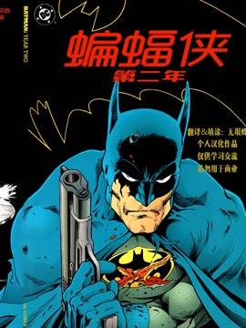蝙蝠侠:第二年