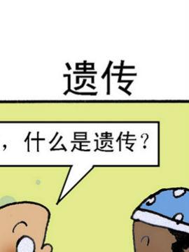 乌龙江湖七