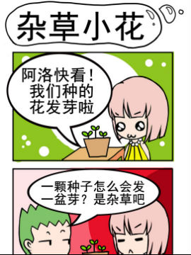 小菇和阿洛之杂草小花