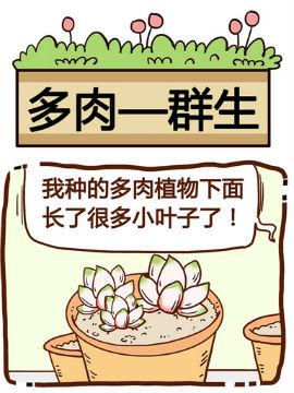 你对植物知多少之群生