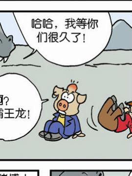 动物可笑堂17