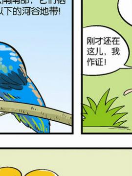 动物可笑堂31