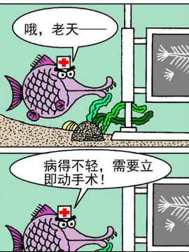 超级鱼乐汇18