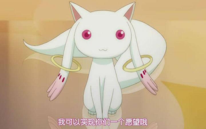 要不要养QB?网友投票评选最想养的动画中的宠物角色