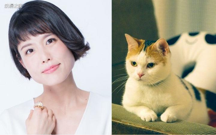 猫片来袭!泽城美雪、前野智昭参演电影《旅猫日记》