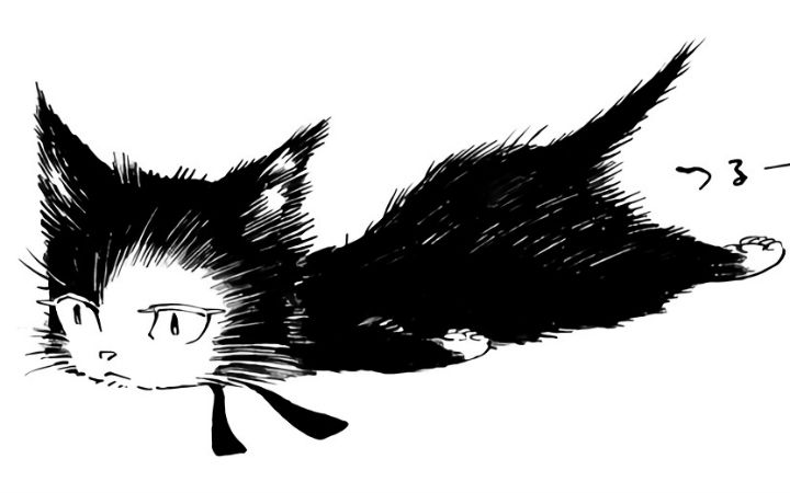 猫咪与大叔的不同视角 高桥秀武漫画《猫与松》