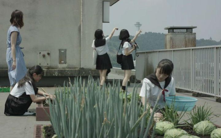 """真人版《学园孤岛》出现卷心菜""""作画崩坏""""场景"""