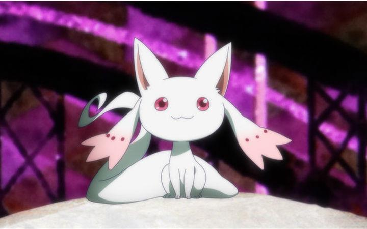 动画《魔法少女小圆外传》PV公开!2020年1月播出