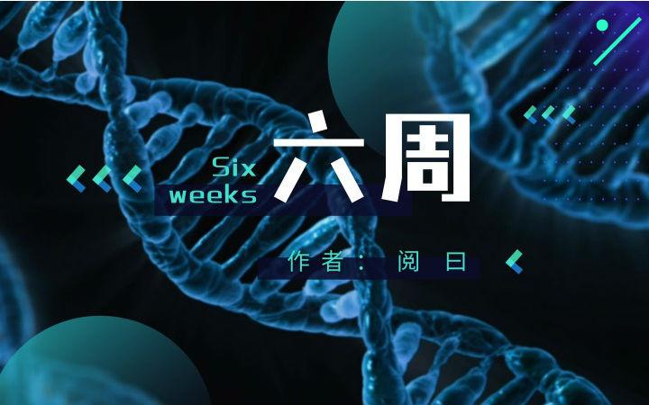 【原创】科幻短篇——《六周》