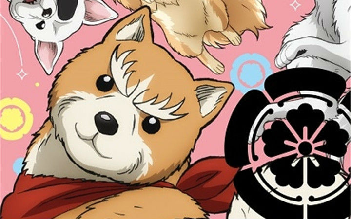 动画《织田肉桂信长》1月开播!Pierrot负责制作