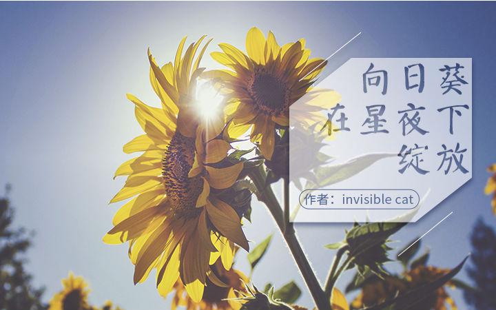 【原创】原创轻小说——《向日葵在星夜下绽放》上