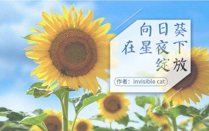 【原创】原创轻小说——《向日葵在星夜下绽放》下