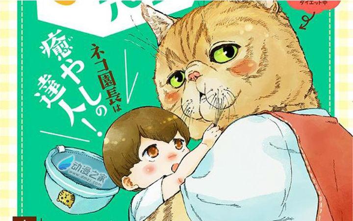 你想要一位这样的保育猫吗?