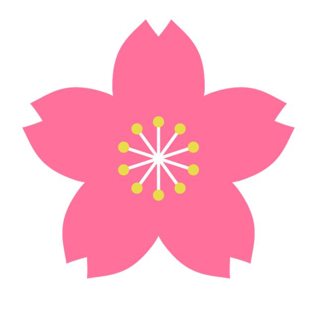 樱花.png