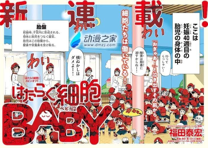 hatarakusaiboubaby02_看图王.jpg