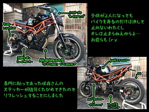 72248158_p1_master1200.jpg