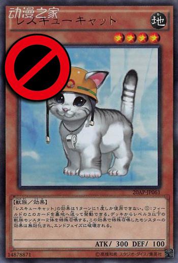 救援猫-禁.jpg